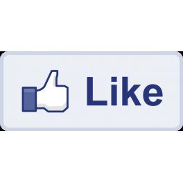 Facebook Like Box pro verzi PS 1.4
