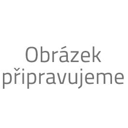 Zajištění a nákup domény .cz, .eu, .com a další